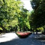 Градска градина-Попово